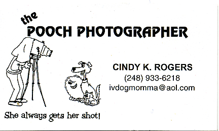 Pooch Photographer
